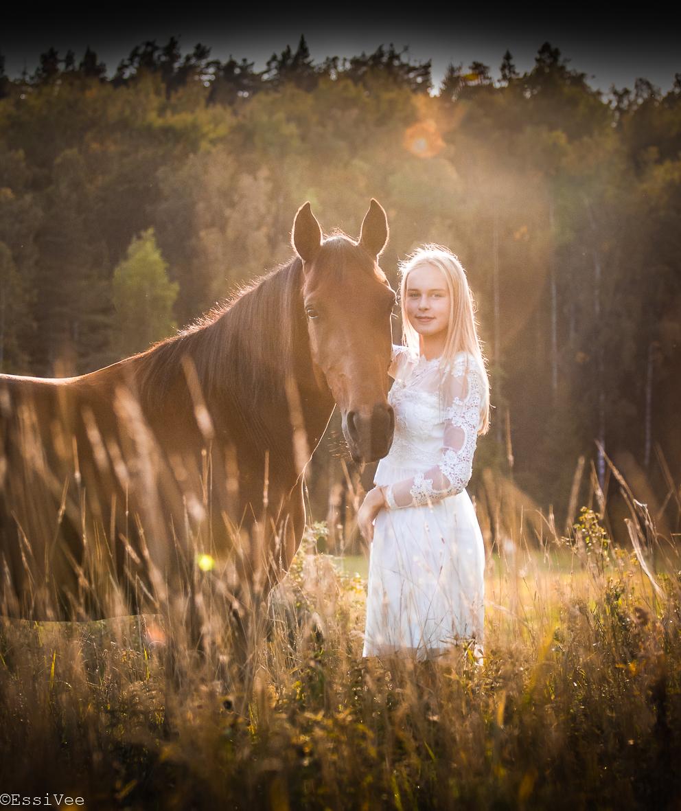 rippikuva hevonen auringonlasku kesä