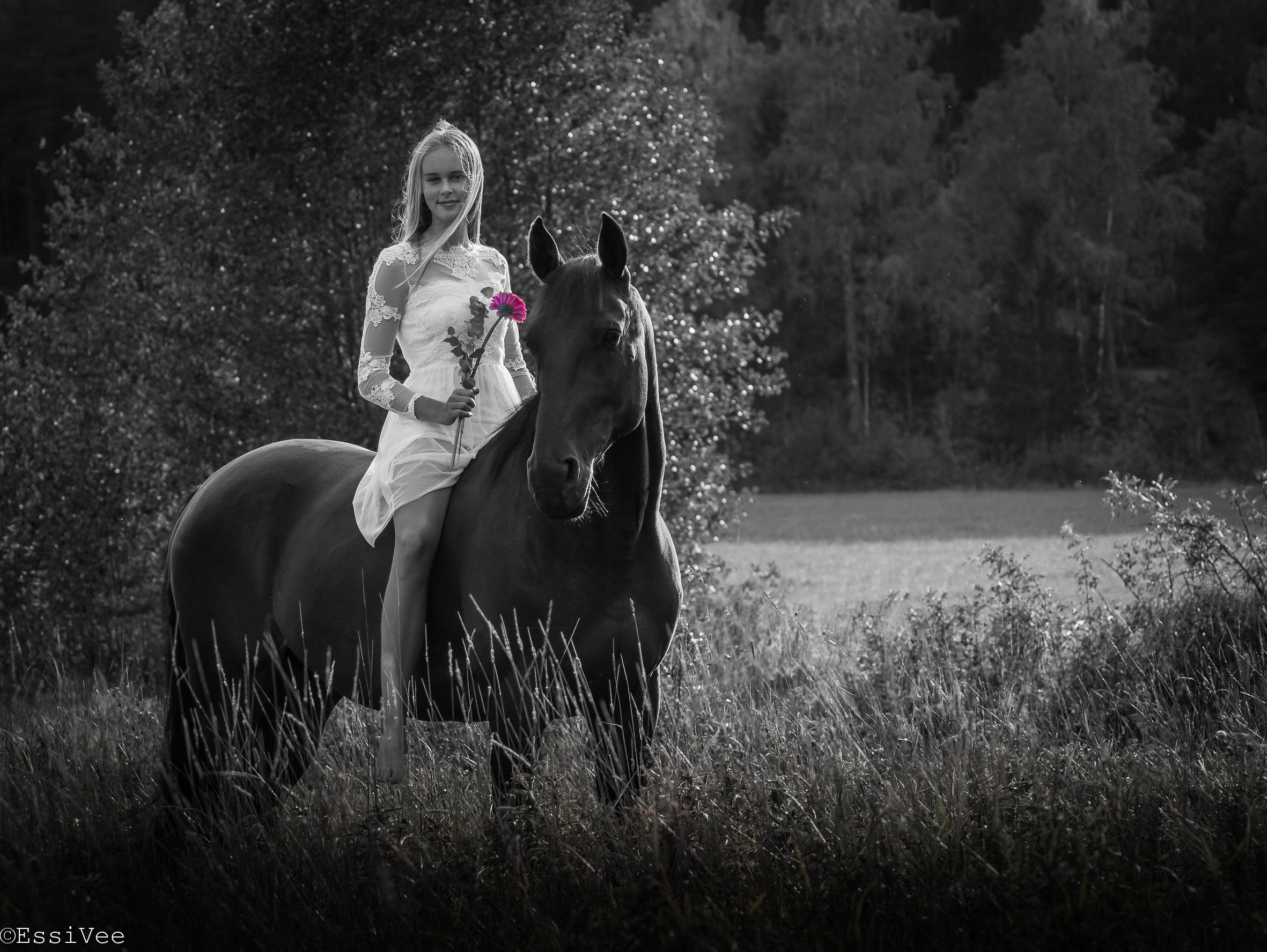rippikuva hevonen kesä